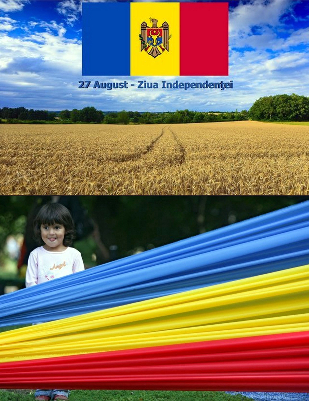 меньший с днем независимости молдовы открытки отличие